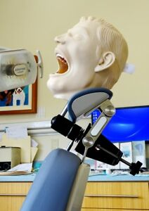 Dental X ray Manikin Simulator Training hairhedrest Mount Mask Typodont 12a New