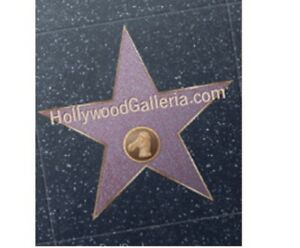 Hollywoodgalleria com Domain Name For Sale