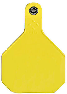 All American Livestock Tag Blank Large Yellow 25 pk