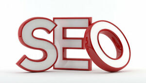 Fully Developed Seo Web Marketing Services Reseller Website