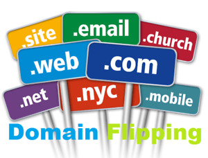 Fully Developed Domain Flipping Infomation Reseller Website