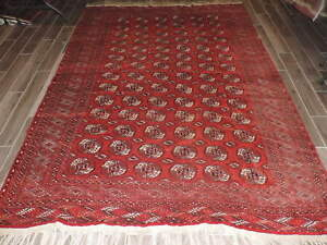 Handknotted Turkoman Bokharra Wool Room Size Rug 7x10ft