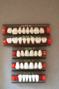 Alca 8 5 Full Cards Of Teeth For Dental Lab Materials