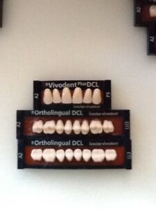 Ivoclar Vivadent Ortholingual Dcl 3 Cards Of A2 Teeth For Dental Lab Materials