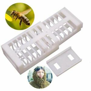 Adjustable Queen Catcher 100 Pcs Match Box Style Rearing Cage Beekeeping Tools
