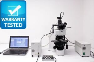 Olympus Bx51 Fluorescence Microscope Bx51trf