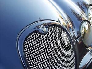 Jaguar S Type Grille Mesh Insert 2002 2004 Approx Stainless Steel Woven