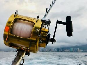 Work From Home Fishing Gear Shopify Dropshipping Website Online Business