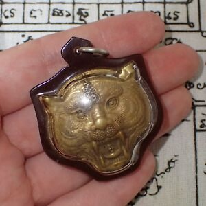 Thai Amulet Brass Tiger Head In Case Phra Luang Phor Pern Tiger Monk Powerful