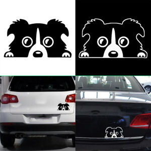 Reflective Waterproof 14 8cm Window Decal Car Sticker Black Silver Collie Dog
