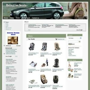 Established Online Baby Car Seat Business Website For Sale Free Domain Name