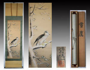 Hanging Scroll Japanese Painting Japan Hawk Bird Antique Vintage Picture 563i