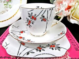 Salisbury Tea Cup And Saucer Trio Kane Pattern Painted Teacup Blossom