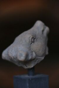 14th Century Rare Cows Head From Kingdom Of Majapahit Trowulan