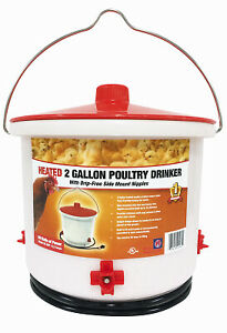 Heated Poultry Drinker 2 gal