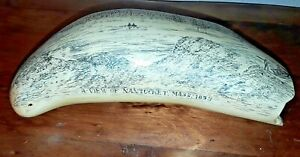 Large Scrimshaw Replica A View Of Nantucket Mass 1853 Sperm Whale Tooth