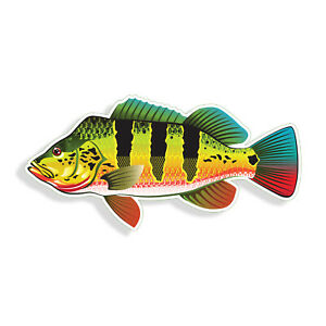 Peacock Bass Sticker Fish Fishing Laptop Boat Car Window Vehicle Bumper Decal