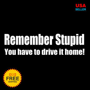 Remember Stupid Decal For Jeep Dodge Ford Chevy Mud Truck Rude Funny Sticker