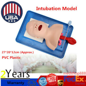 Pvc Intubation Manikin Teaching Model Airway Management Trainer Tool With 1 tube