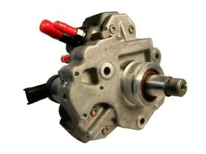 Exergy Sportsman Cp3 Fuel Injection Pump For 03 07 Dodge Ram 5 9l Cummins Diesel