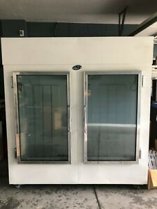 Star Leer Is67ag 50 2 Door Glass Window Ice Bag Freezer Merchandiser Deep