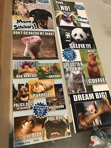 Pet Shop Memes Stickers From Vending Machine Free S h