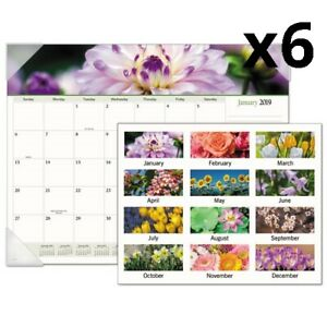 Floral Panoramic Desk Pad 22 X 17 Floral 2020 Pack Of 6