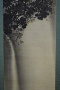 Japanese Painting Hanging Scroll Japan Cascade Waterfall Vintage Antique 559n