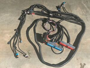 1997 2006 Dbc Ls1 Standalone Wiring Harness T56 Or Th350 Th400 Powerglide 700r4