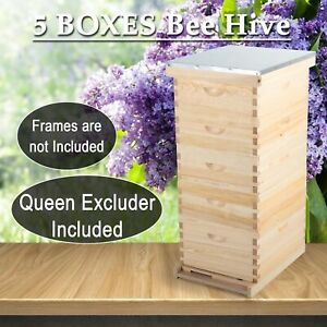 10 frame Size Beekeeping Kit Bee Hive Frame beehive Frames W queen Excluder Gfs