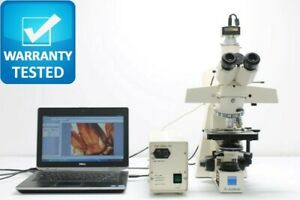 Zeiss Axioskop Bf df Fluorescence Phase Contrast Microscope