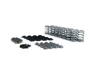 Comp Valve Spring Kit Hydraulic Roller Retainers Dual Springs 7 degree Retainers