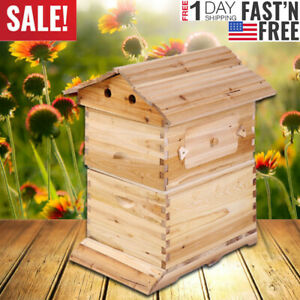 Beehive Beekeeping House Wooden Box Hive Honey Keeper For Auto 7 Hive Frames Usa