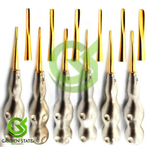 Set Of 6 Gold Tip Dental Coupland Root Elevator Tooth Luxating Luxation Elevator
