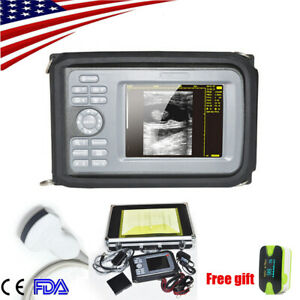 Portable Machine Ultrasound Scanner Digital Convex abdomen Probe Human Usps Ce