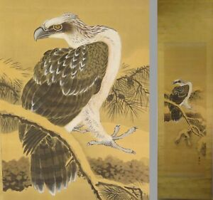 Uk519 Kakejiku Bird Animal Hanging Scroll Japanese Art Painting Nihonga Picture