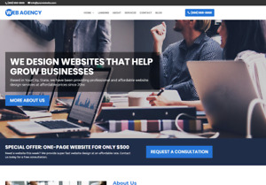 Agency Business Website Wordpress Platform Free Installation To Your Hosting