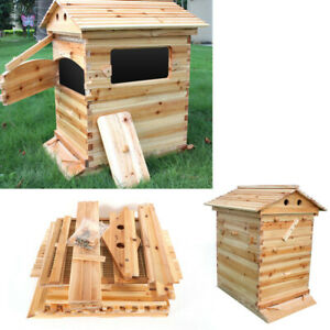 Mobile Bee Hive House Auto Honey Frames Beehive Beekeeping Brood Wooden Box Kit
