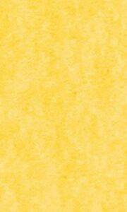 Tissue Paper Yellow 20 X 30 240 Large Sheets Gift Wrap Wrapping Bulk