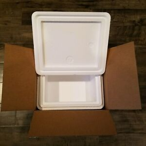 Styrofoam Insulated Cooler With Shipping Box Ext Meas 13 25 l X 11 25 w X 9 h
