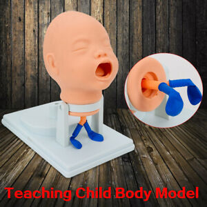 Infant Tracheal Intubation Model Head 360 Swing Airway Management Trainer New