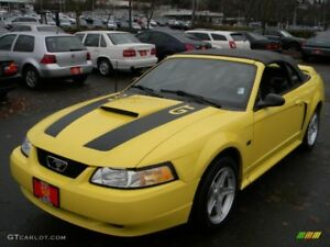 1999 2000 2001 2002 2003 2004 Mustang Gt Hood Stripe Kit