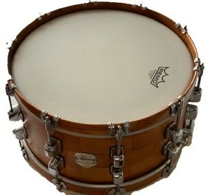 Snare Drum 14x6 Inch Segmented Cedar Wood Exclusive Model limited Edition