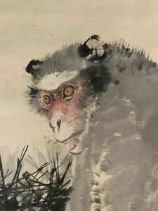 Hanging Scroll Japanese Painting Japan Monkey Antique Kakejiku Old Art E059