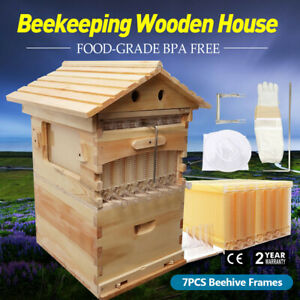 Upgraded Super Beehive Brood Box Bee House Or 7x Free Move Honey Hive Frames Usa