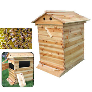 Beekeeping Chinese Fir Super Brood Box For Auto Honey Bee Hive Frames Fast Ship