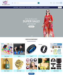 Automated Dropshipping Website Business For Sale Professional Niche Store
