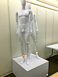 Fiberglass Male 2 Full Body Mannequin In Glossy White With Display Base