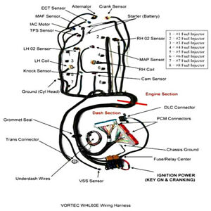1997 2006 Dbc Ls1 Stand Alone Harness 4l60e 4 8 5 3 6 0 Vortec Drive By Cable
