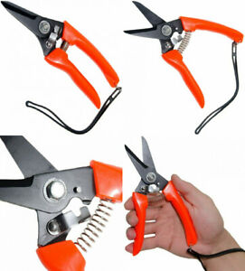Deeall Goat Sheep Pig Hoof Trimmer Multipurpose Twig And Floral Trimming